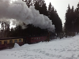 Brockenwanderung©Oberschule Nienburg (OBS-Z)
